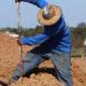 KTE On the Job:  KT Irrigation [KTI], Meadowbrook (Oct 2019)
