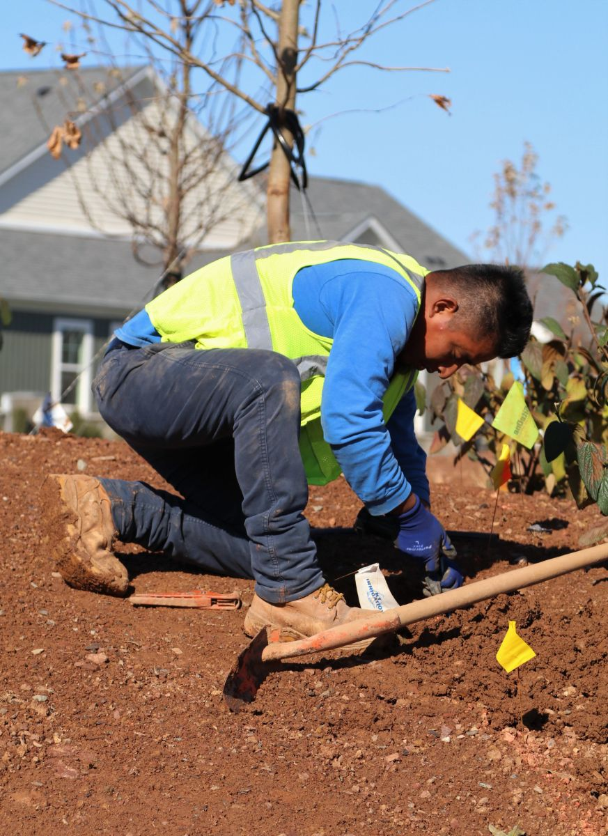 KTE On the Job:  KTI Setting Irrigation (Nov 2019)